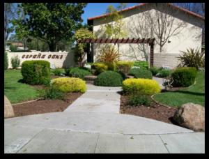 Espana Oaks townhomes in Los Gatos