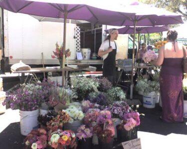 Los Gatos farmers market flowers