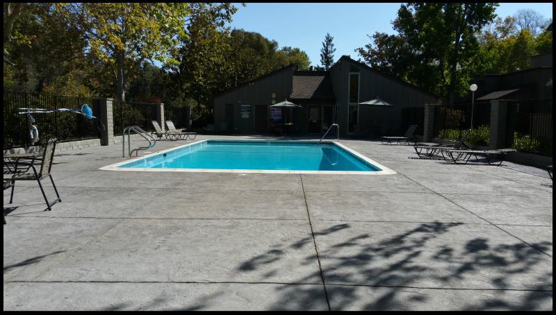 Charter Oaks Pool Area