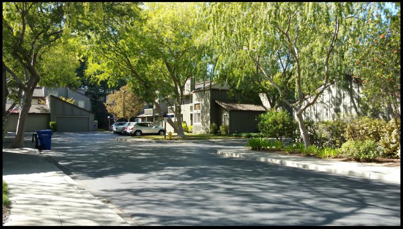 Charter Oaks neighborhood view