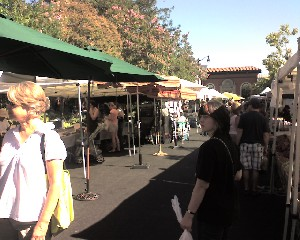 Crowd view - Visit the Los Gatos Farmer's Market!