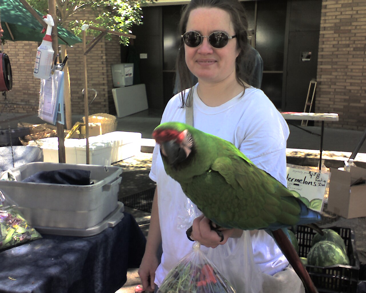 Farmers mkt bird - Visit the Los Gatos Farmer's Market!