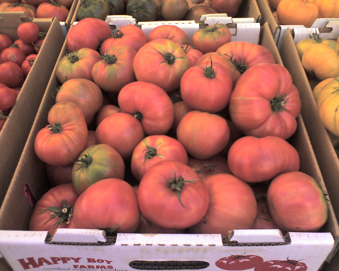 Tomatoes - Visit the Los Gatos Farmer's Market!