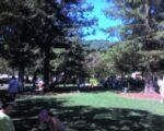 Town Park Plaza