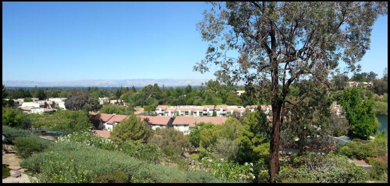 Rinconada Hills view