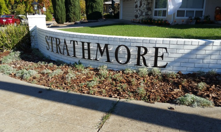 Strathmore neighborhood in Los Gatos