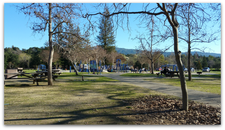 Vasona Lake County Park in winter