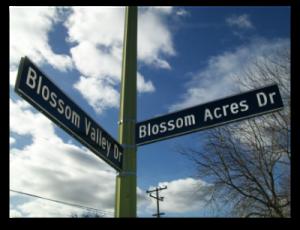 Blossom Valley Blossom Acres street sign