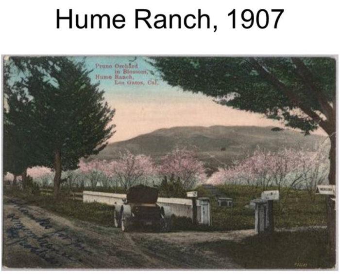 Hume Ranch - Los Gatos / Saratoga 1907