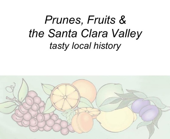Slide1 560x460 - Saratoga and Los Gatos prune orchards - a piece of living history