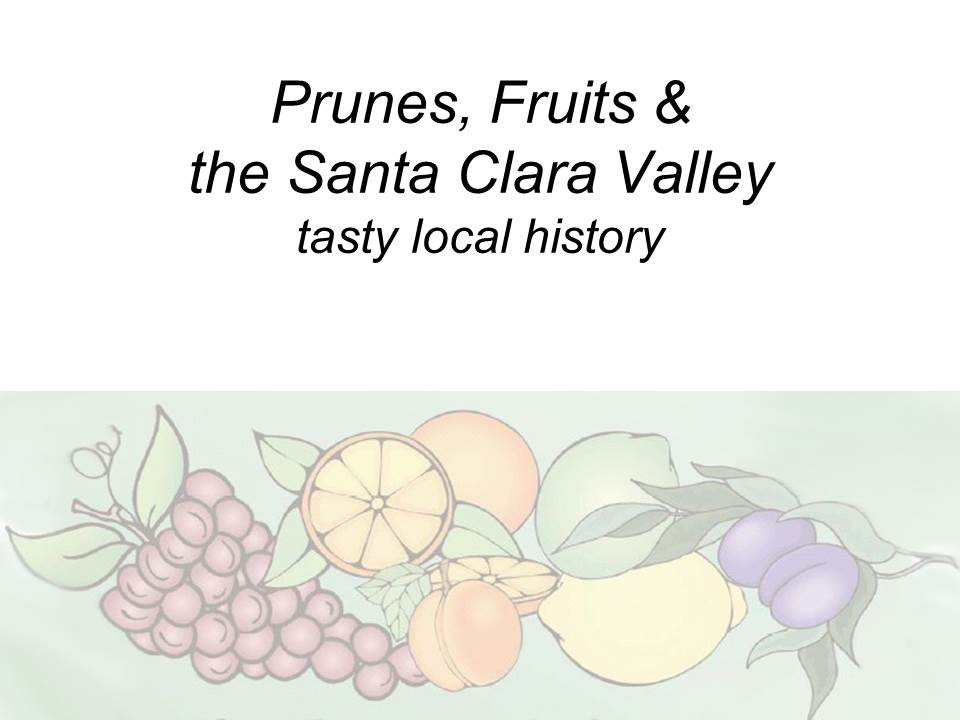 Slide1 - Saratoga and Los Gatos prune orchards - a piece of living history