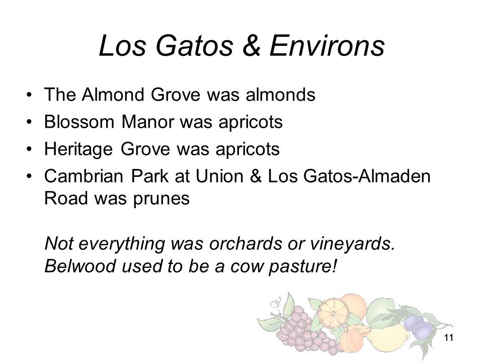 Slide11 - Saratoga and Los Gatos prune orchards - a piece of living history