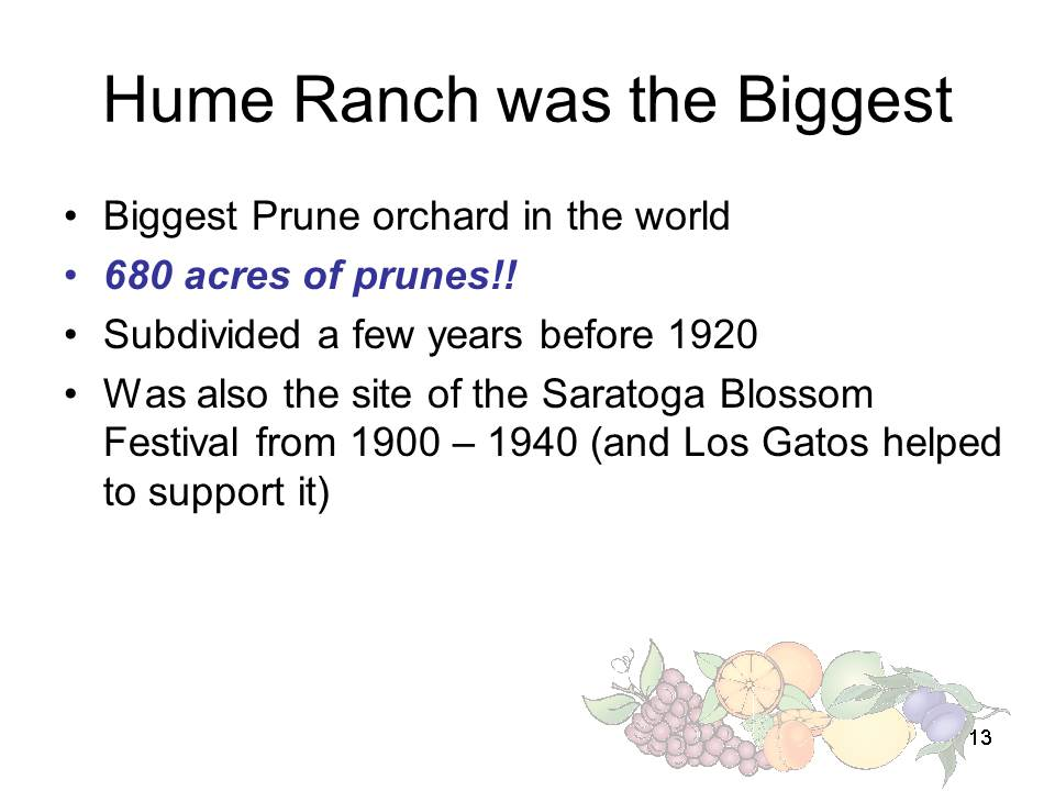 Slide13 - Saratoga and Los Gatos prune orchards - a piece of living history