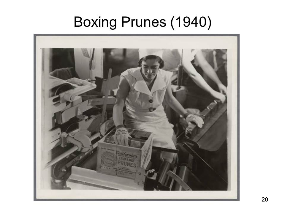 Slide20 - Saratoga and Los Gatos prune orchards - a piece of living history