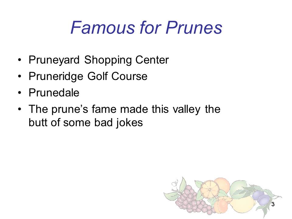Slide3 - Saratoga and Los Gatos prune orchards - a piece of living history
