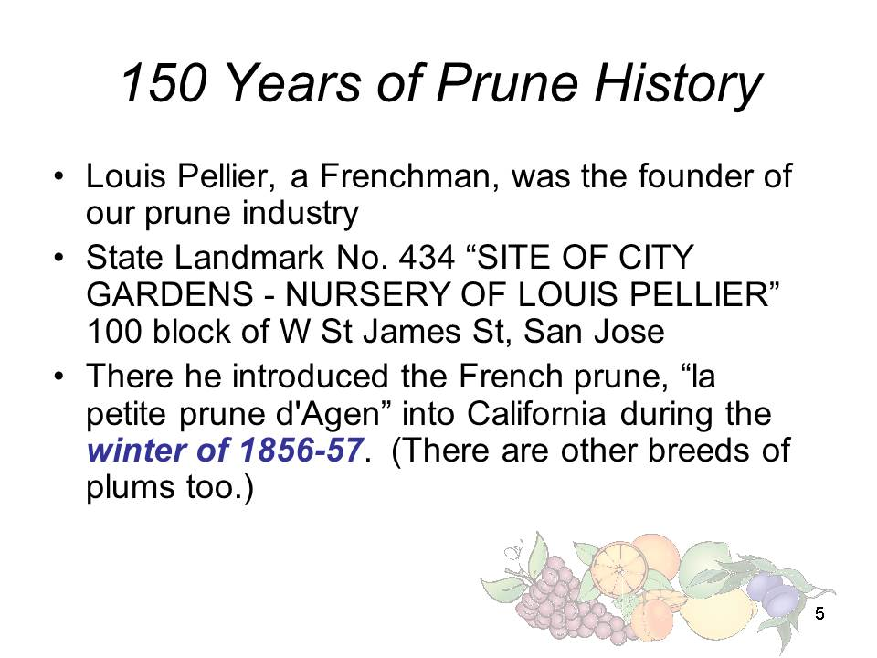 Slide5 - Saratoga and Los Gatos prune orchards - a piece of living history