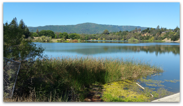 Vasona Lake County Park off Garden Hill Road in Los Gatos