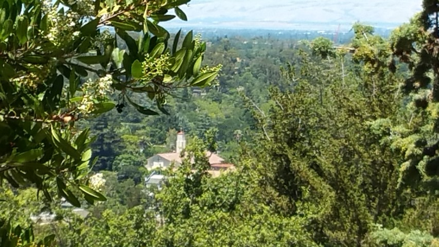 View of St Marys Church in Los Gatos - Sacred Heart Jesuit Center - formerly the Jesuit Novitiate