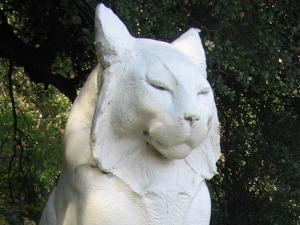 The Cats of Los Gatos Leo and Leona