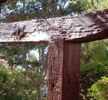 Ming Quong gate damage